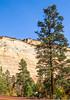 Zion National Park - C2-0022 - 72 ppi-2