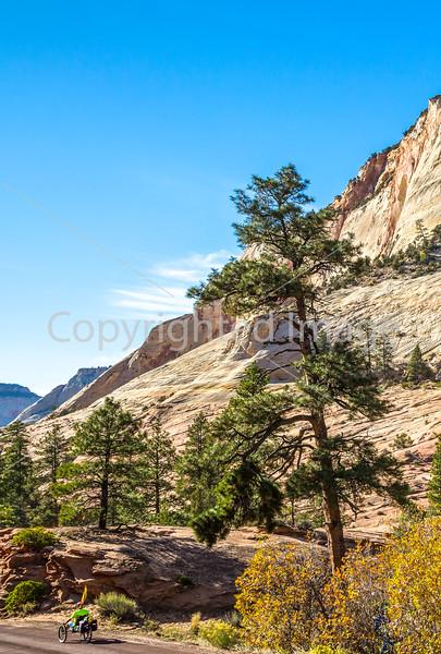 Zion National Park - C2-0083 - 72 ppi-2