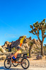 Joshua Tree National Park - 2016 -D1- C3-0088 - 72 ppi-2