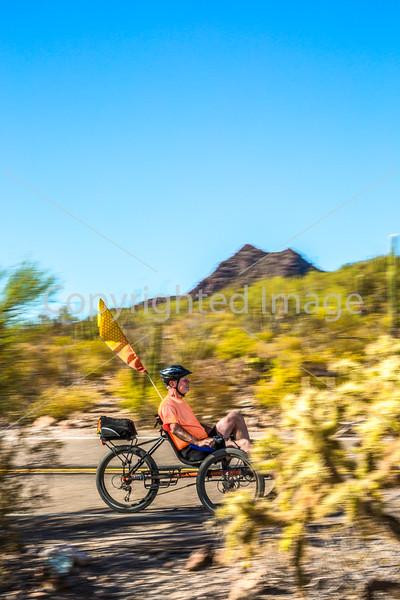 Organ Pipe Cactus National Monument - D1-C2-0160 - 72 ppi