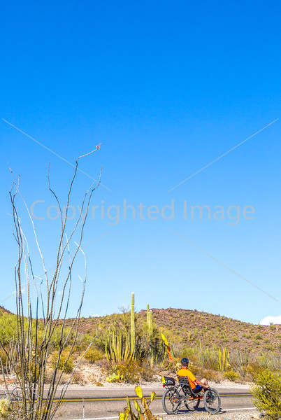 Organ Pipe Cactus National Monument - D1-C2-2 - 72 ppi-5