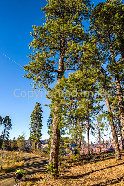 North Rim of Grand Canyon National Park - C3-0238 - 72 ppi