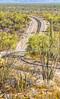 Organ Pipe Cactus National Monument - D1-C1-0492 - 72 ppi