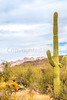 Organ Pipe Cactus National Monument - D1-C2-0090 - 72 ppi-2