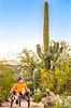 Saguaro National Park - C3-0092 - 72 ppi-2