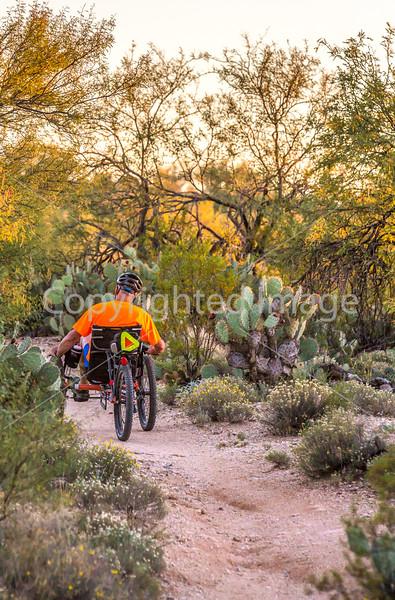 Saguaro National Park - C1-0283 - 72 ppi
