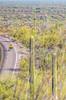 Organ Pipe Cactus National Monument - D1-C1-0364 - 72 ppi-2