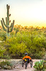 Saguaro National Park - C1-0352 - 72 ppi-2