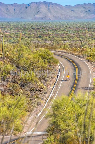 Organ Pipe National Monument in Arizona - C1-0479 - 72 ppi