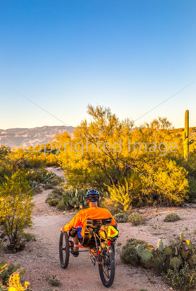 Sunset on mountain bike trail at Saguaro Nat'l Park - C3-0053 - 72 ppi-2