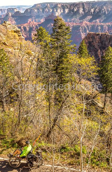 North Rim of Grand Canyon National Park - C3-0164 - 72 ppi