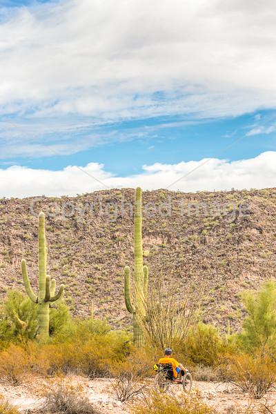 Organ Pipe Cactus National Monument - D1-C1-0018 - 72 ppi