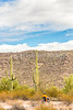 Organ Pipe Cactus National Monument - D1-C1-0018 - 72 ppi