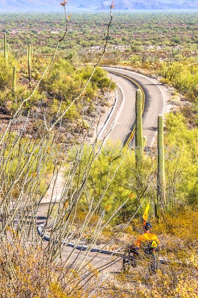 Organ Pipe Cactus National Monument - D1-C1-0209 - 72 ppi