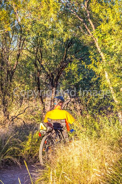 Sunset on mountain bike trail at Saguaro Nat'l Park - C3-0012 - 72 ppi