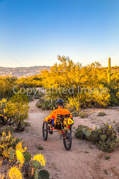 Sunset on mountain bike trail at Saguaro Nat'l Park - C3-0053 - 72 ppi