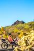 Organ Pipe Cactus National Monument - D1-C2-0160 - 72 ppi-2