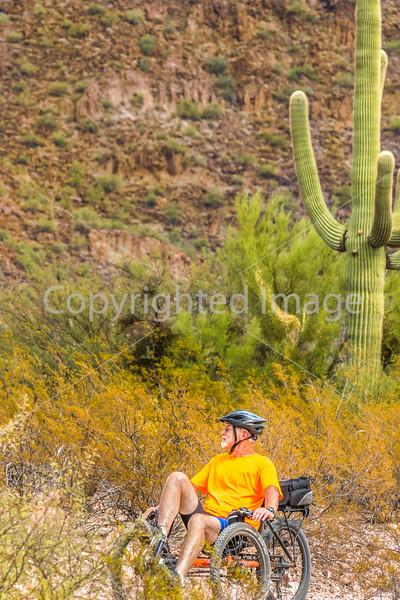 Organ Pipe Cactus National Monument - D1-C1-0048 - 72 ppi