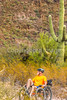 Organ Pipe Cactus National Monument - D1-C1-0048 - 72 ppi