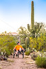Saguaro National Park - C3-0092 - 72 ppi