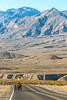 Death Valley National Park - D3-C1-0076 - 72 ppi