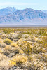 Approaching Death Valley Nat'l Park - D1-C1-0446 - 72 ppi