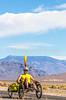 Approaching Death Valley Nat'l Park - D1-C1-0340 - 72 ppi