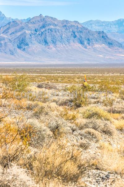 Approaching Death Valley Nat'l Park - D1-C1-0456 - 72 ppi