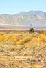 Death Valley National Park - D1-C1#2-30091 - 72 ppi-2