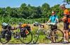 ACA - TransAm rider(s) near Coyville, Kansas, consulting map - C1-1043 - 72 ppi