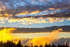 Maine - Acadia - Sojourn - D1-C1-0069 - 72 ppi