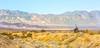 Death Valley National Park - D1-C1#2-30091 - 72 ppi-3