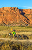 Vermilion Cliffs National Monument - C1-0152 - 72 ppi