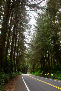 July 20, 2021 Crescent City to Arcata. 77 miles and 4,800 ft elevation. (Megan Beth Media)