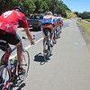 Paceline down Silverado Trail