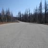 GO Road