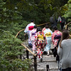 Golden Pavilion - Kinkaku-ji