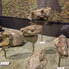 Fossil Beds Nat Monument Museum