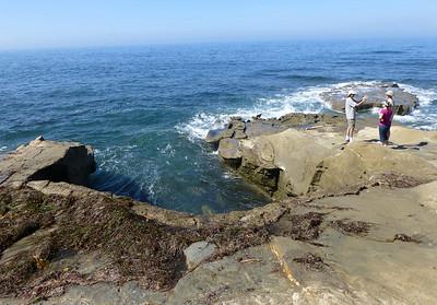 Seaweed foam rocks LJ Coast 120818 P2500719