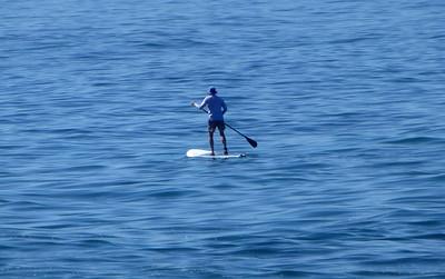 Paddleboard LJ Coast 120818 P2500723