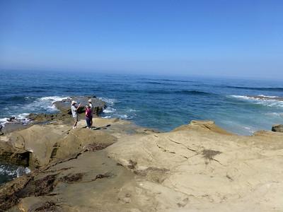 Seaweed foam rocks LJ Coast 120818 P2500721