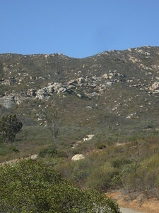 Carol Paul Climbing  Del Dios Highlands 071021 P1160392
