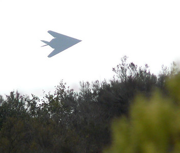 F-117 Stealth Fighter entering cloud Rose Cyn Air Show 071013 crNIP1430068