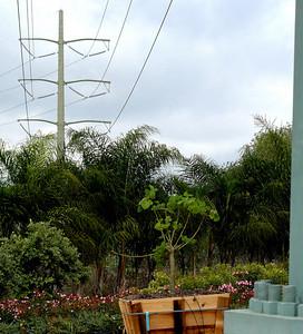 Nursery power lines bolts 071013 crbdP1430096