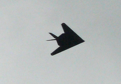 F-117 Stealth Fighter Rose Cyn Air Show 071013 crNIP1430067