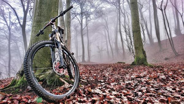 Scottsquar Hill winter foggy