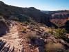 Porcupine Rim Trail. Moab, UT