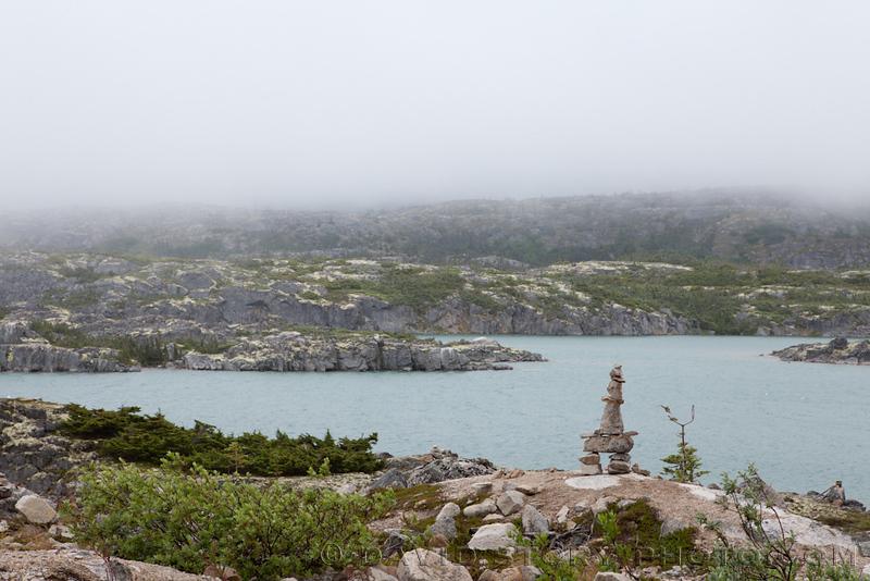 And then we found lichen heaven.