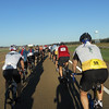Rolling in a nice double paceline in perfect weather