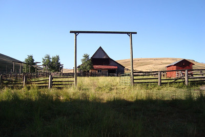 More of the old ranch.